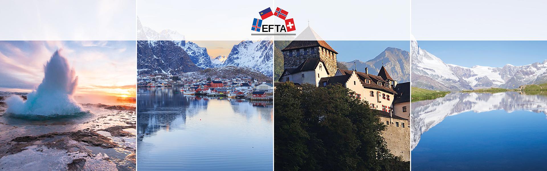 EFTA Annual Report 2018