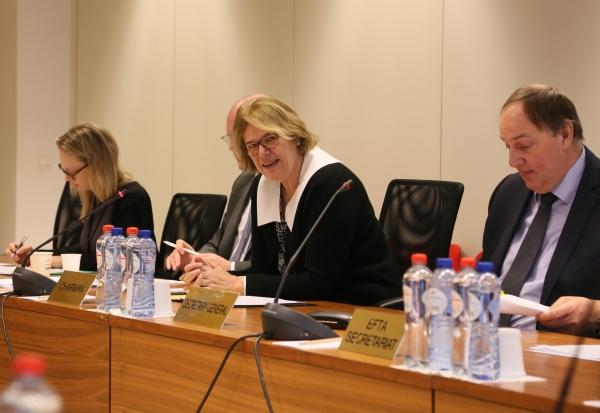 Ambassador Oda Sletnes chairing the meeting, with Kristinn Árnason, EFTA Secretary General (right) and Turi Bakke, First Secretary Norwegian Mission to the EU (left).
