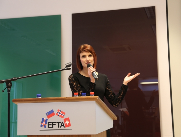 EEA Seminar 7 February 2017