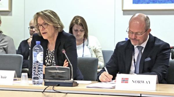 Ambassador Oda Sletnes chairing the meeting on 2 February 2017
