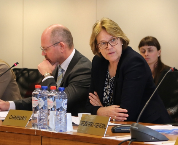 Norway's Ambassador to the EU Ms Oda Sletnes chairing the Standing Committee meeting on 16 March 2017