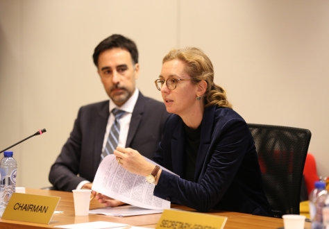 The Ambassador of Liechtenstein to Belgium and Head of the Mission of Liechtenstein to the EU, Sabine Monauni, chaired the 218th EEA Joint Committee meeting.