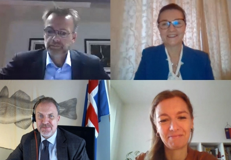 Clockwise from top left: Per Strand Sjaastad, Clara Ganslandt, Head of Western Division at the EEAS and EU Chair in the Joint Committee, Chair Sabine Monauni, Head of Liechtenstein's Mission to the EU, and Kristján Andri Stefánsson, Head of Iceland's Mission to the EU.