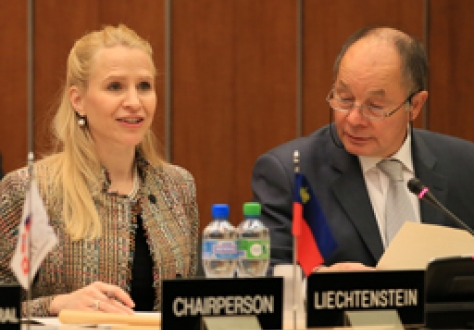 Ms Auriela Frick, Ms Aurelia Frick, Minister of Foreign Affairs, Liechtenstein, chairing the EFTA Ministerial meeting in Geneva on 18 November 2013; and Mr Norbert Frick, Ambassador, Mission of Liechtenstein to EFTA and WTO