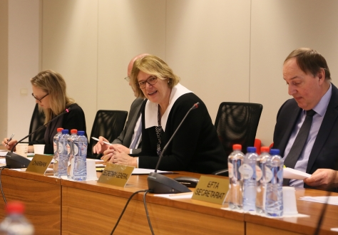Ambassador Oda Sletnes chairing the meeting, with Kristinn Árnason, EFTA Secretary General (right) and Turi Bakke, First Secretary Norwegian Mission to the EU (left).