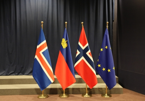 Brexit on the agenda of the 48th EEA Council.