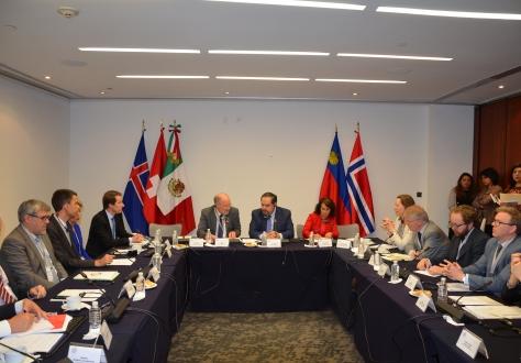 The EFTA Parliamentary Committee at the Senate by Senator Hector Larios Cordova