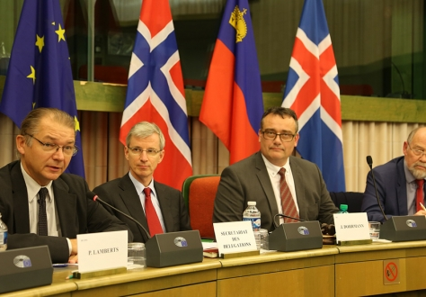 MEP Phiippe Lamberts from the EP's Brexit Steering Group briefs parliamentarians on the role of the European Parliament with regards to Brexit. With EEA JPC co-chairs Jørn Dohrmann and Svein Roald Hansen.