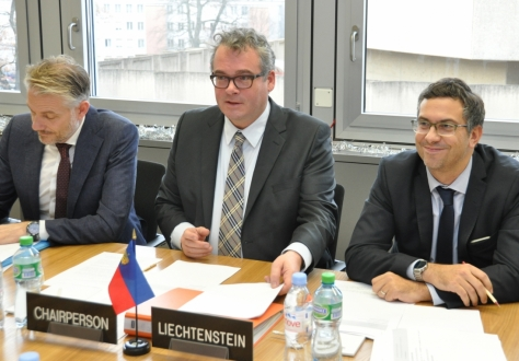 From left: Adalsteinn Leifsson, Secretary to the Council, Peter Matt, Ambassador of Liechtenstein (Chair), Pascal Schafhauser, Liechtenstein Deputy Permanent Representative.