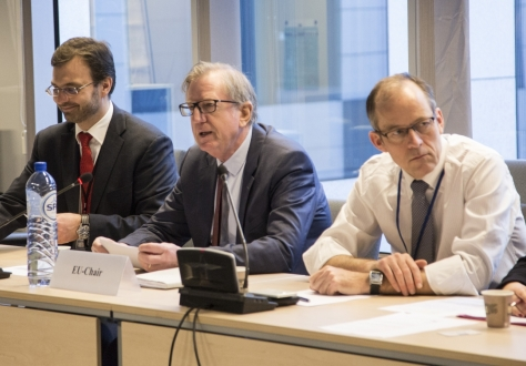 Claude Maerten (Centered),  European External Action Service, chaired the meeting.