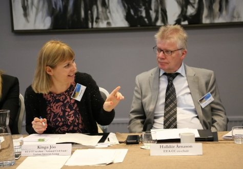 Co-Chairs Kinga Jóo and Halldór Árnason.
