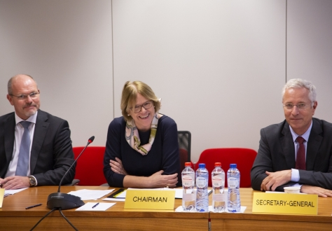 The meeting was chaired by Oda Sletnes, Norway's Ambassador to the EU, with minister councellor Knut Hermansen (left) and EFTA Secretary General Henri Gétaz (right).