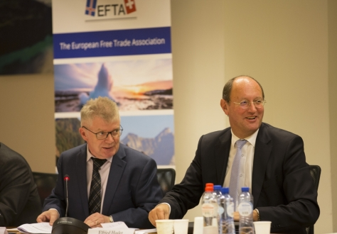 The meetings were co-chaired by Mr Halldór Árnason and Mr Elfried Hasler.