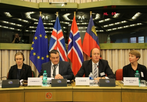 The meeting was chaired by Elfried Hasler, Chair of the EFTA Parliamentary Committee, and Jørn Dohrmann, MEP.