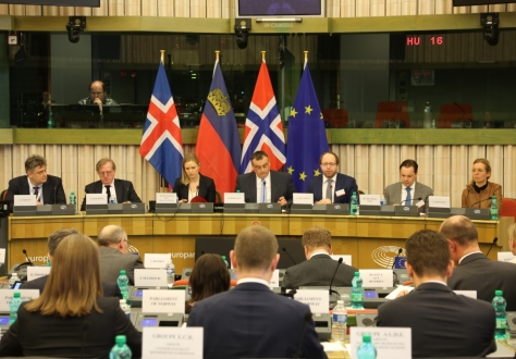 The EEA Joint Parliamentary Committee co-chaired by Jørn Dohrmann and Smári McCarthy