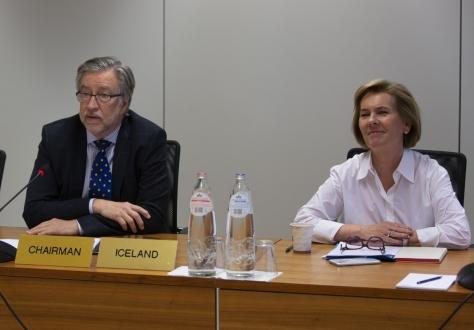 Icelandic Ambassador Gunnar Pálsson, Chair, and Hege Marie Hoff, EFTA Deputy Secretary-General.