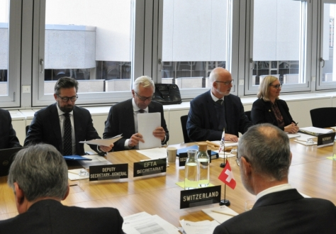 The EFTA Council is chaired by Norway in the second half of 2019.