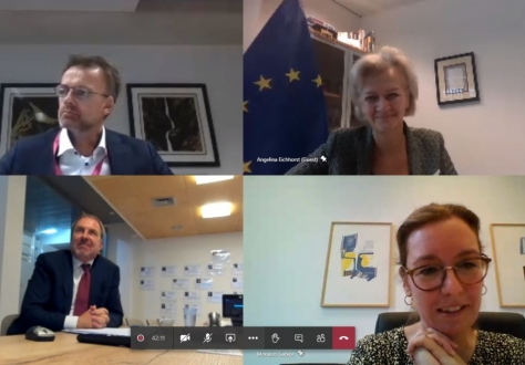 EEA Joint Committee through videoconference, clockwise from top left: Per Sjaastad, Deputy-Head of Norway's Mission to the EU, Angelina Eichhorst, Managing Director Europe Central Asia at European External Action Service, Sabine Monauni, Head of Liechtenstein's Mission to the EU, Kristján Andri Stefánsson, Head of Iceland's Mission to the EU.