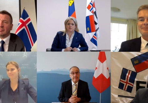 Advisory Bodies meet with EFTA Ministers, clockwise from top left: Guðlaugur Þór Þórðarson (Iceland), Katrin Eggenberger (Liechtenstein), Jan Atteslander (CC Chair), Svein Roald Hansen (PC Chair), Guy Parmelin (Switzerland), and Lucie Katrine Sunde-Eidem (Norway, State-Secretary at the Ministry for Trade and Industry).