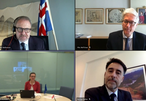 Clockwise, from top left: Kristján Andri Stefánsson, Head of Iceland's Mission to the EU, Rolf Einar Fife, Head of Norway's Mission to the EU, Stefan Barriga, Acting Head of Liechtenstein's Mission to the EU, Clara Ganslandt, Head of Western Division at the EEAS.