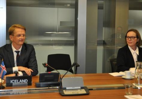Icelandic Ambassador Harald Aspelund charing the meeting, with Deputy Head of Mission Ólöf Hrefna Kristjánsdóttir.