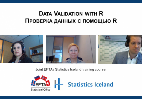 Training course on data validation using R organised by ESO in cooperation with Statistics Iceland
