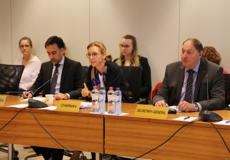 The Ambassador of Liechtenstein to Belgium and Head of the Mission of Liechtenstein to the European Union, Sabine Momauni, chaired the 215th EEA Joint Committee meeting.