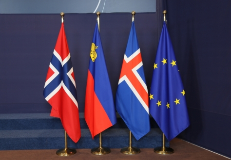 The EEA Council will take place on 28 May 2021
