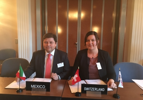 Mr César Guerra Guerrero, Minister Representative of the Ministry of Economy of Mexico to the EU and Ms Karin Büchel, Minister and Head of the Free Trade Agreements Division at the State Secretariat of Economic Affairs of Switzerland