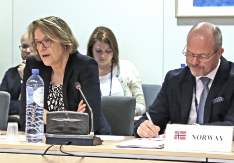 Ambassador Oda Sletnes chairing the meeting on 2 February 2017