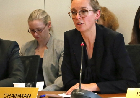 The Standing Committee is currently chaired by Sabine Monauni, Ambassador of Liechtenstein.